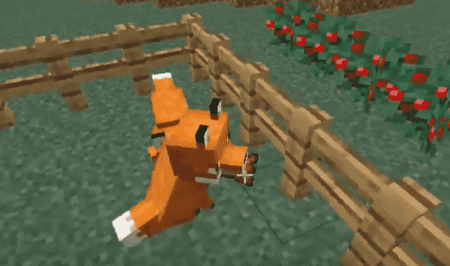 Fox breeding minecraft