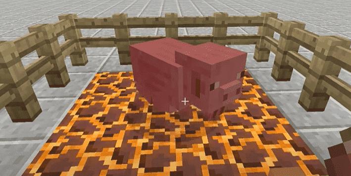 magma block burns