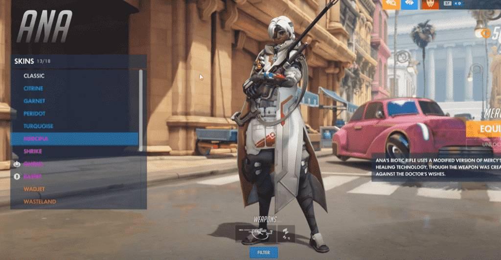 Merciful Overwatch Ana Skins